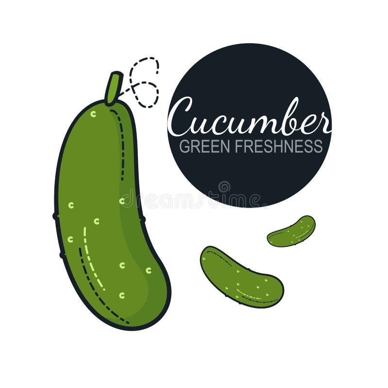Verse organische geïsoleerde komkommer royalty-vrije illustratie