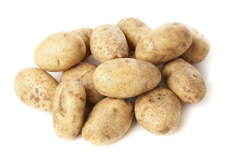 Verse Organische Gehele Aardappel stock afbeelding