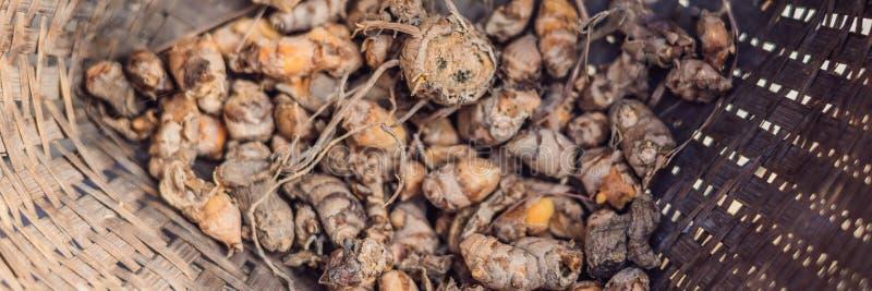 Verse organische kurkuma in een rieten mandbanner, lang formaat stock foto's