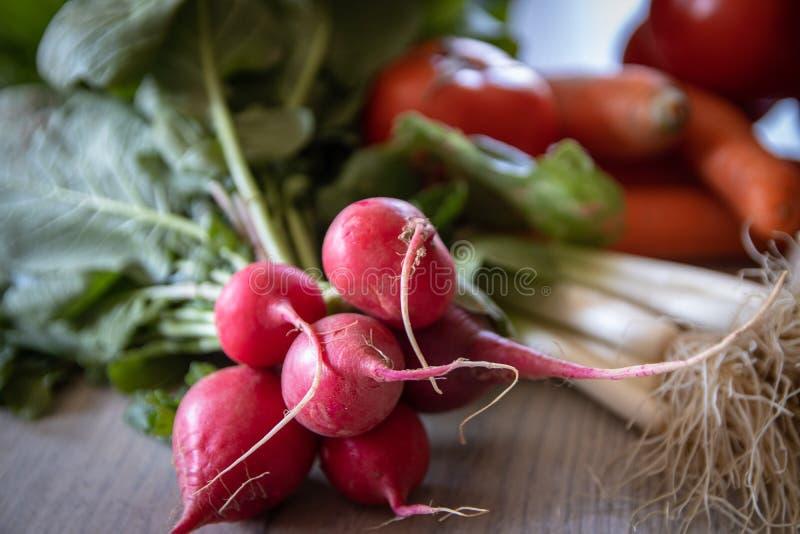 Verse organische radijzen stock foto's