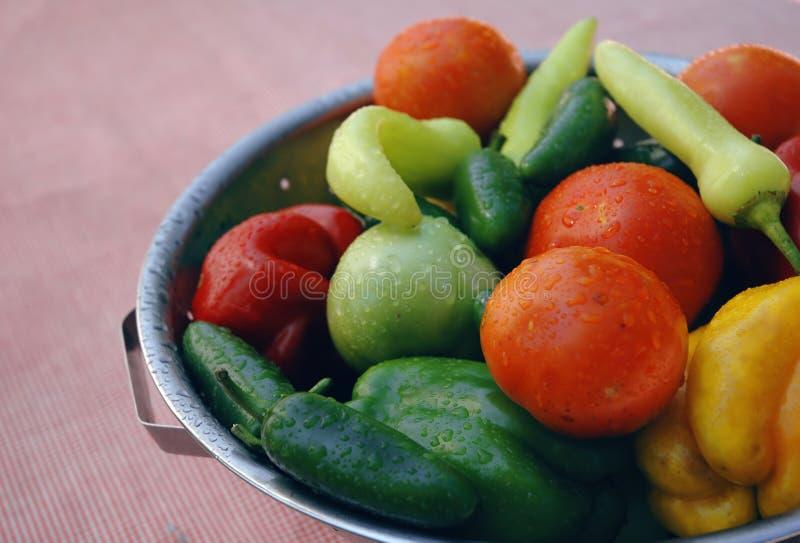 Verse organische vegtables royalty-vrije stock afbeeldingen