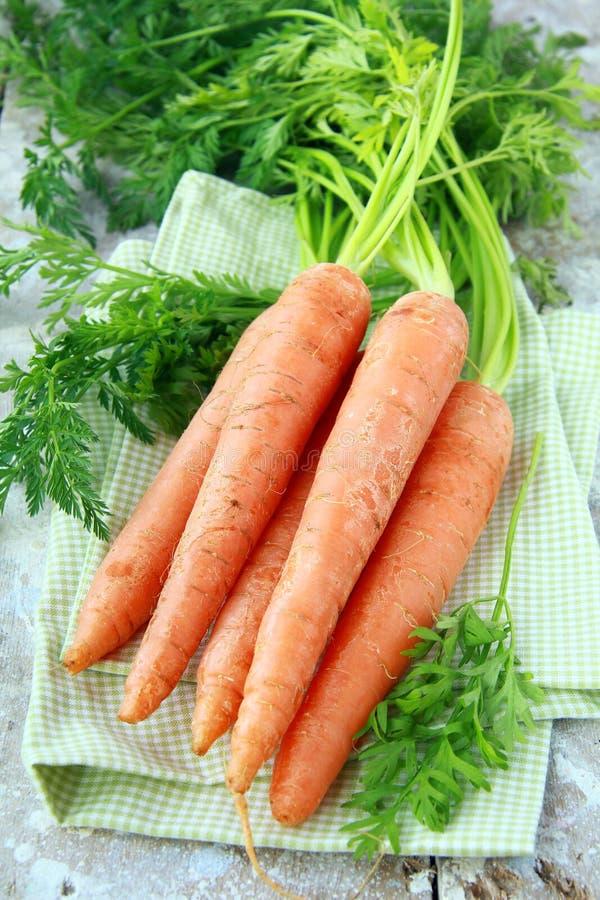 Verse organische wortel met groene bladeren stock afbeelding