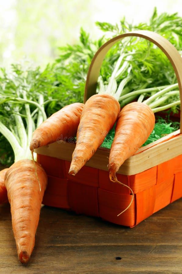 Verse organische wortel met groene bladeren royalty-vrije stock foto