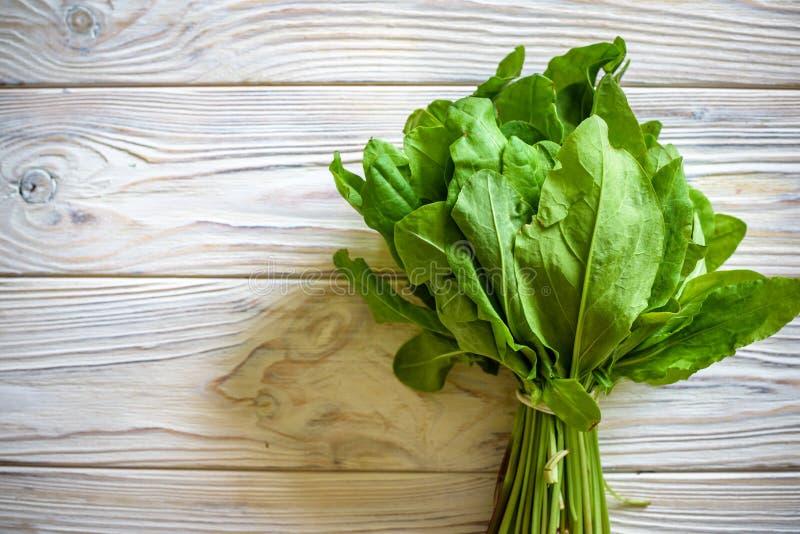 Verse organische zuring, de bos van de spinazieinstallatie op houten lijst voor salade van de de lente de groene groentesoep De r royalty-vrije stock foto