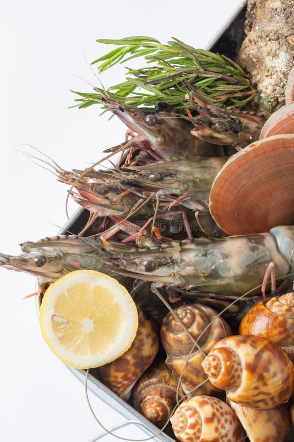Verse overzees voedselreeks stock foto