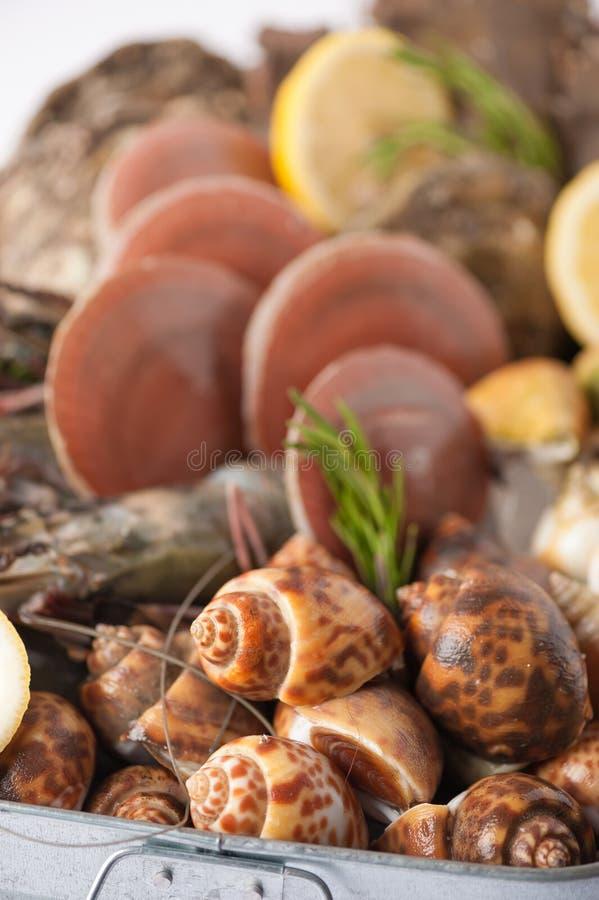 Verse overzees voedselreeks stock fotografie