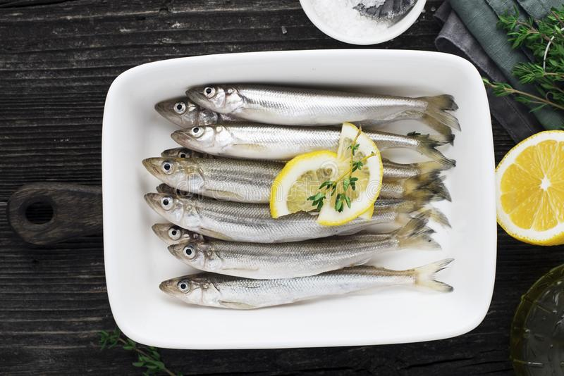 Verse overzeese koud-water kleine vissen zoals spiering, sardine, ansjovissen op een eenvoudige achtergrond met citroenplakken, v royalty-vrije stock fotografie
