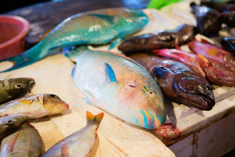 Verse papegaaivissen op zeevruchtenmarkt royalty-vrije stock afbeeldingen