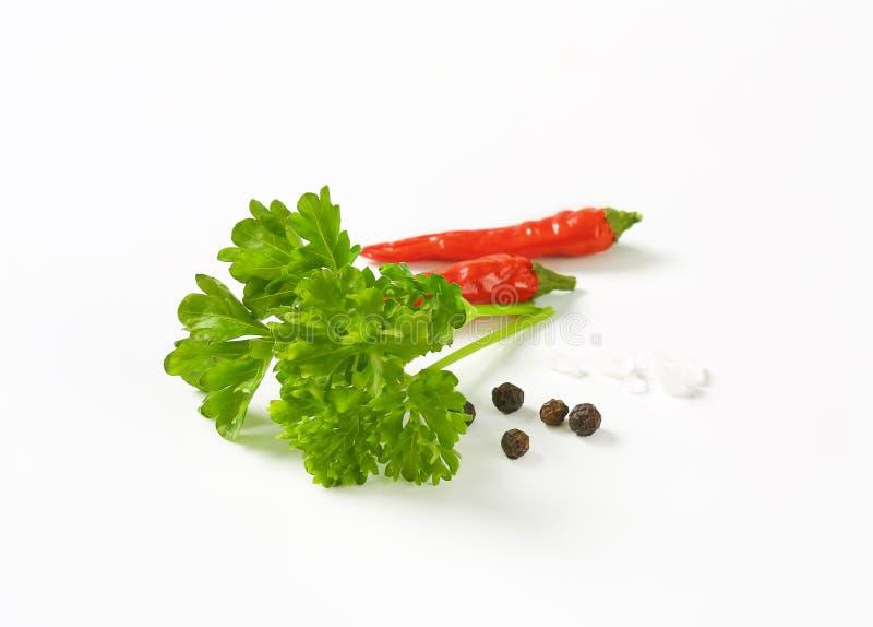 Verse peterseliebladeren en andere ingrediënten royalty-vrije stock foto