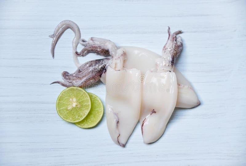 Verse pijlinktvis op de menings Ruwe pijlinktvis van de lijstbovenkant en citroenkalk op witte houten achtergrond royalty-vrije stock afbeelding
