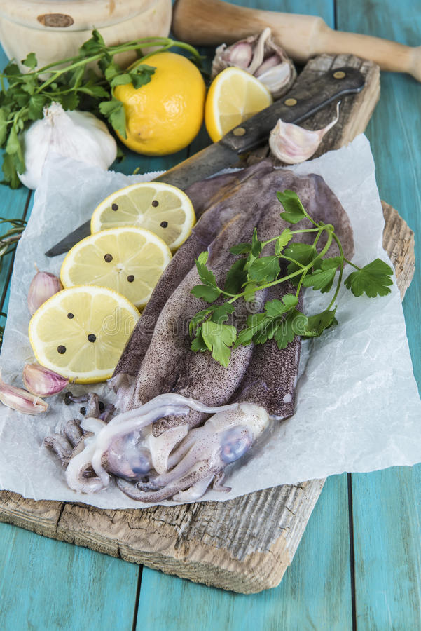 Verse pijlinktvissen stock foto