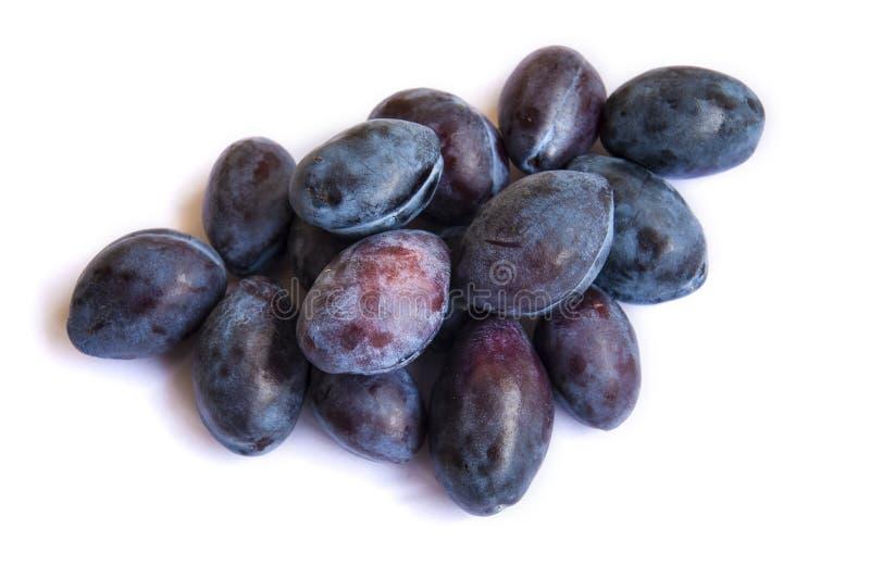 verse pruim Close-up van pruimfruit op een witte achtergrond Donkere pruimkleur stock fotografie