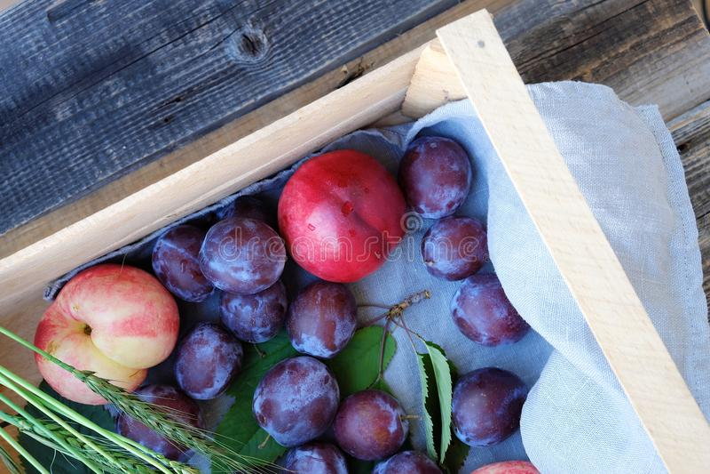Verse pruimen en perziken in een houten doos royalty-vrije stock foto