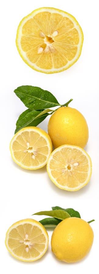 Verse rijpe citroenen Geïsoleerdj op witte achtergrond Citroen Fruit met bladeren op een witte achtergrond stock fotografie