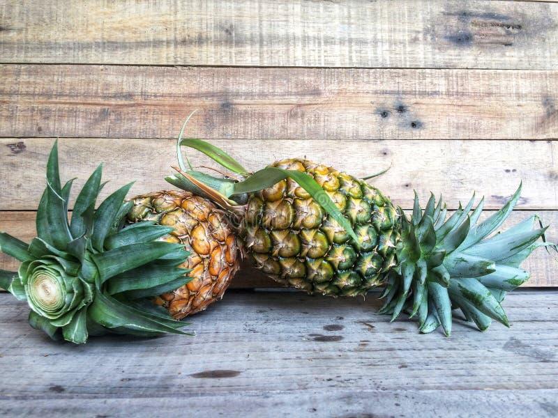 Verse rijpe die ananas enkel van de tuin wordt opgenomen royalty-vrije stock foto