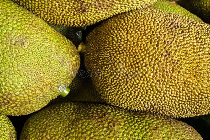 Verse rijpe jackfruit stock foto's