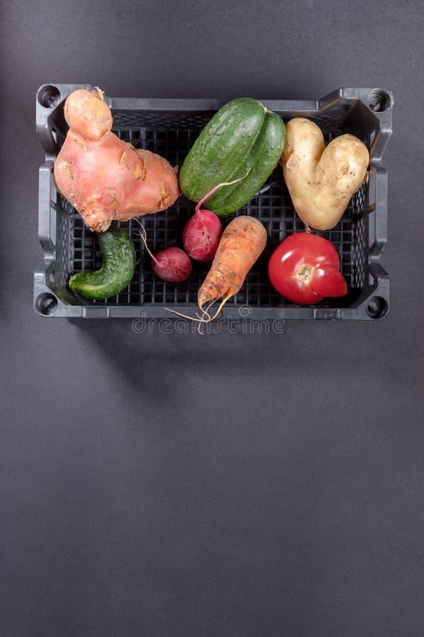 Verse rijpe lelijke groenten in plastic doos op donkere grijze achtergrond royalty-vrije stock foto
