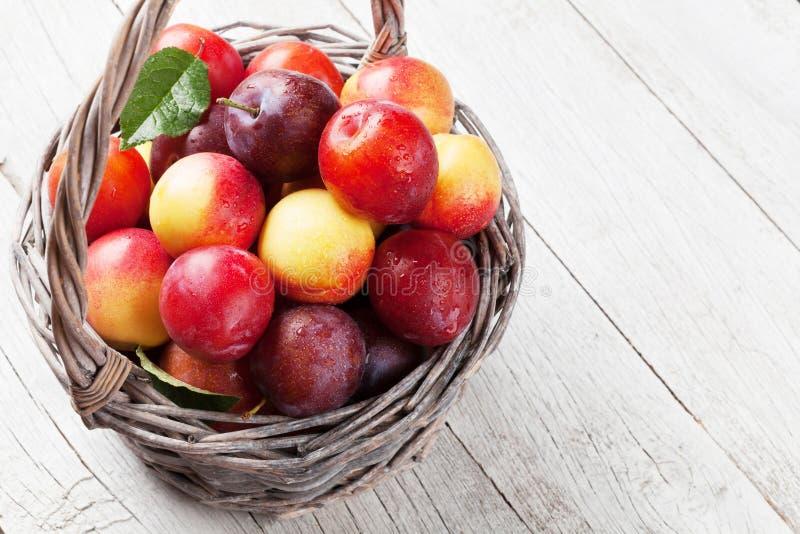 Verse rijpe perziken en pruimen in mand stock foto