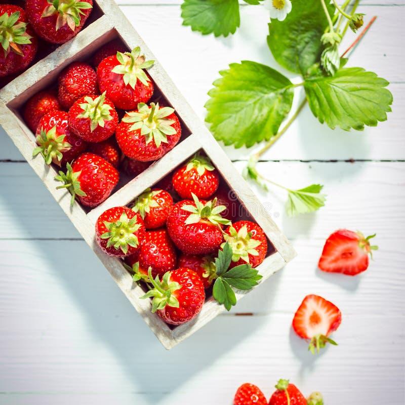 Verse rijpe rode aardbeien in dozen royalty-vrije stock afbeeldingen