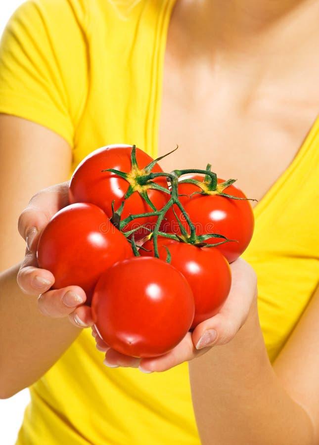 Verse rijpe tomaten royalty-vrije stock fotografie