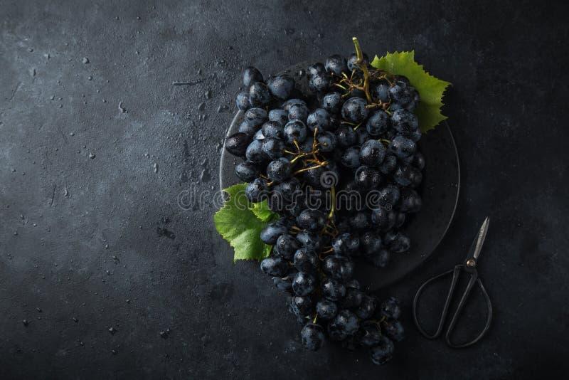 Verse rijpe zwarte druiven op donkere concrete achtergrond royalty-vrije stock afbeelding