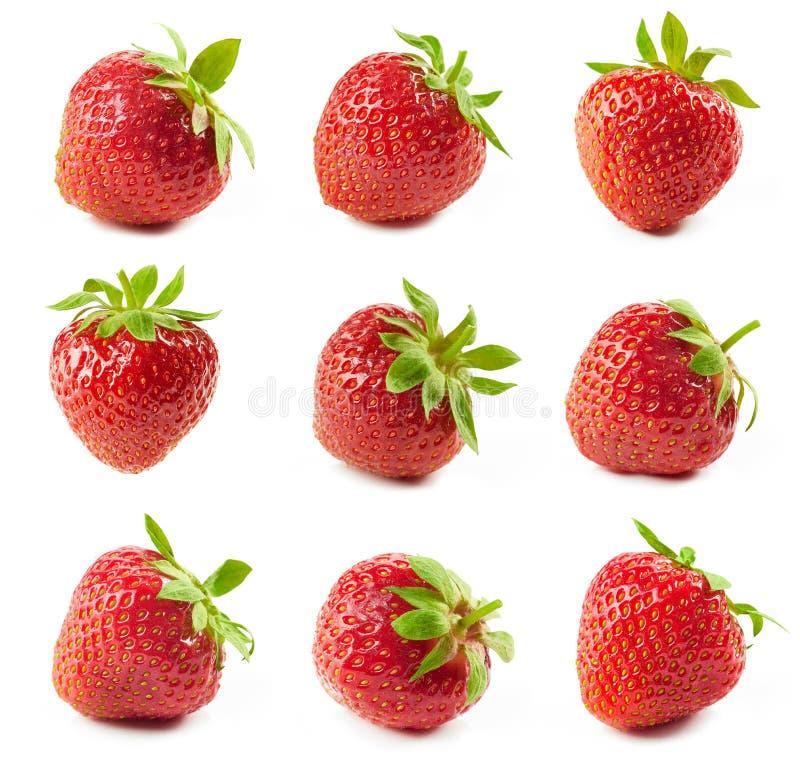 Verse rode aardbeien royalty-vrije stock afbeeldingen