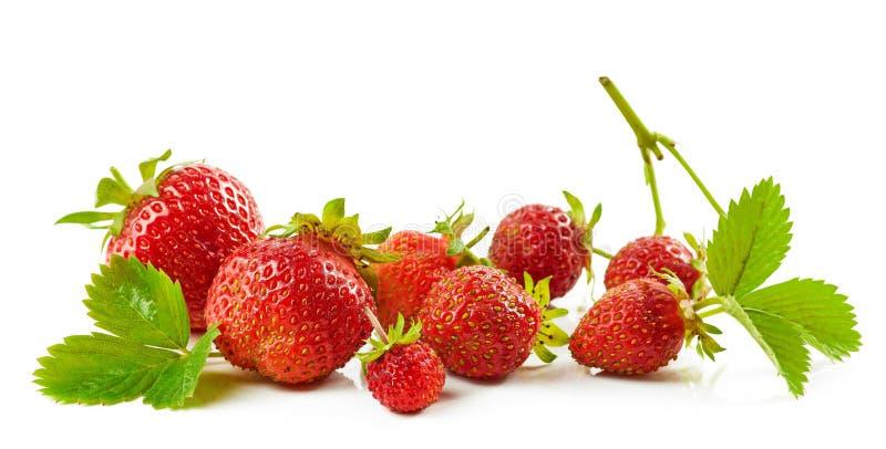 Verse rode aardbeien met groene bladeren stock fotografie