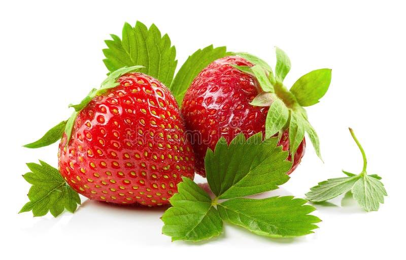 Verse rode aardbeien met groene bladeren stock foto