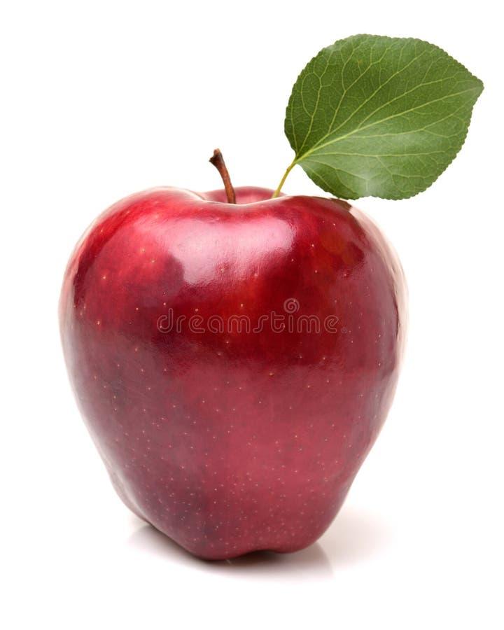 Verse rode appel met bladeren royalty-vrije stock afbeeldingen