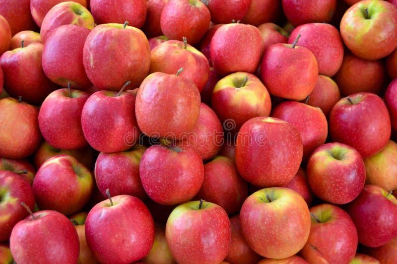 Verse rode die appel in de buurtmarkt wordt verkocht stock fotografie