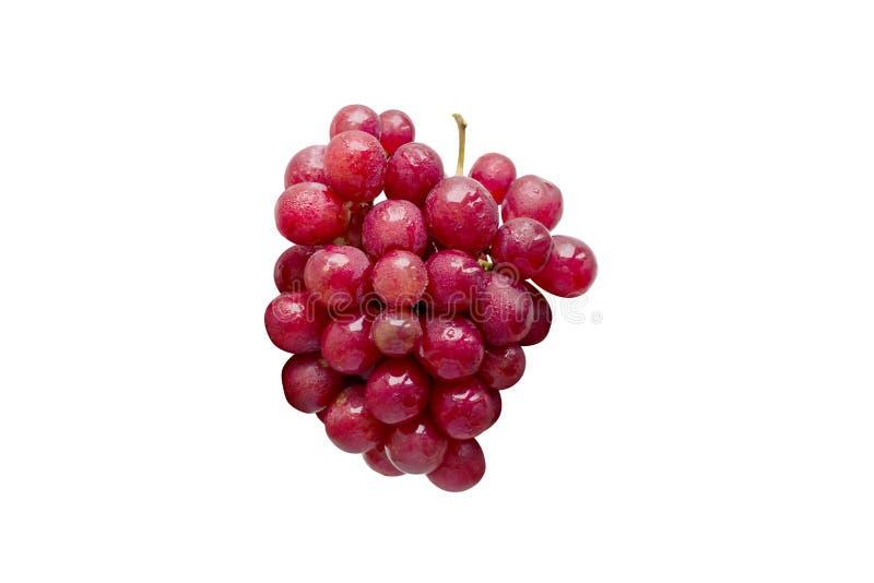 Verse rode die druiven op witte achtergrond worden geïsoleerd stock fotografie