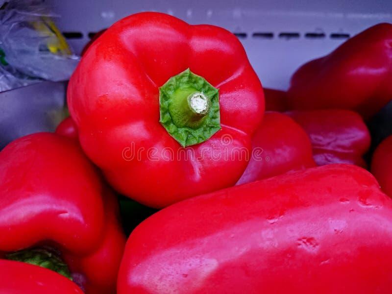 Verse rode groene paprika of capicum royalty-vrije stock foto