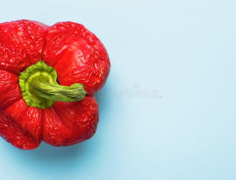 Verse rode groene paprika close-upvoorwerp, macrofotografie Voedsel creatief concept De hoogste menings Blauwe Vlakte Als achterg royalty-vrije stock afbeelding