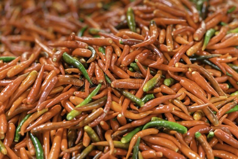 Verse Rode Spaanse pepers stock afbeelding