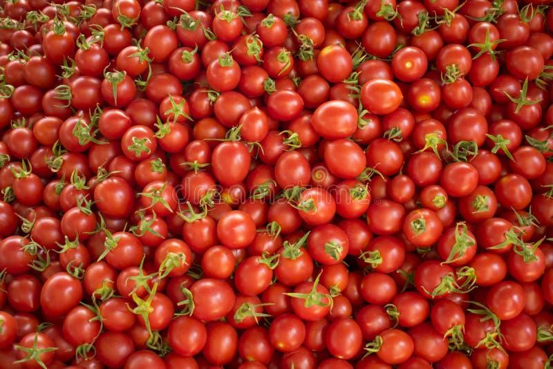 Verse rode tomaten bij een landbouwersmarkt Gezond voedsel Organische achtergrond stock afbeelding