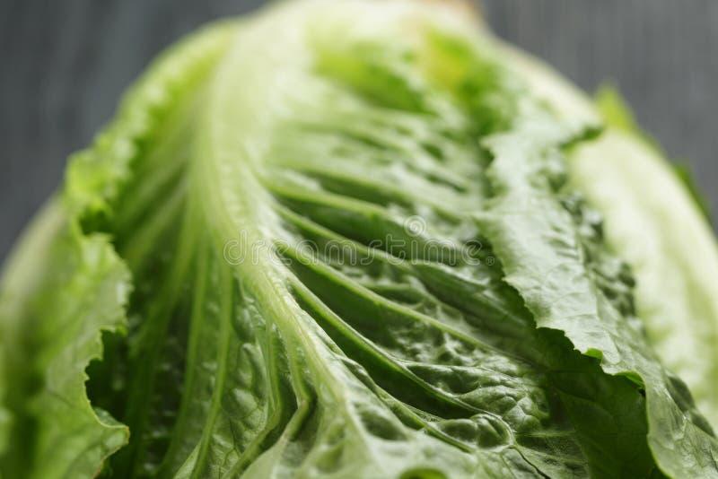 Verse romain groene salade op houten lijst stock fotografie