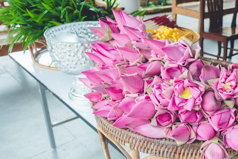 Verse roze die lotusbloemknoppen aan worshipers worden aangeboden royalty-vrije stock foto