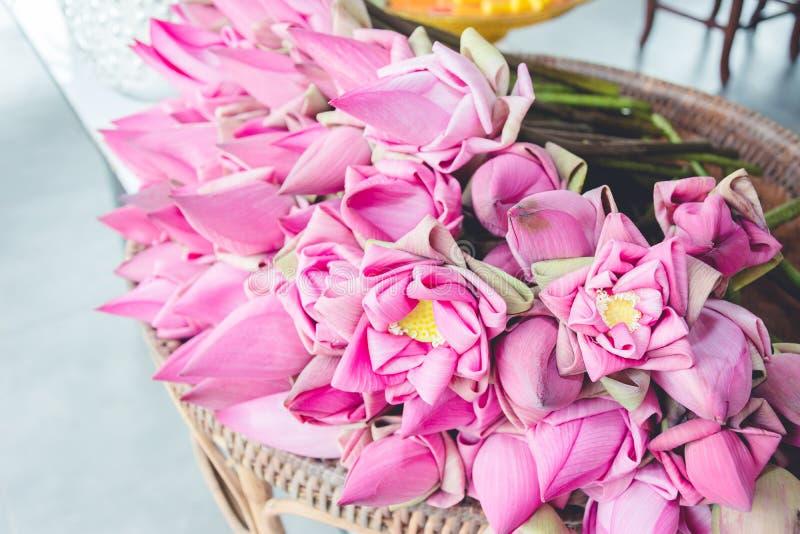 Verse roze die lotusbloemknoppen aan worshipers worden aangeboden royalty-vrije stock fotografie