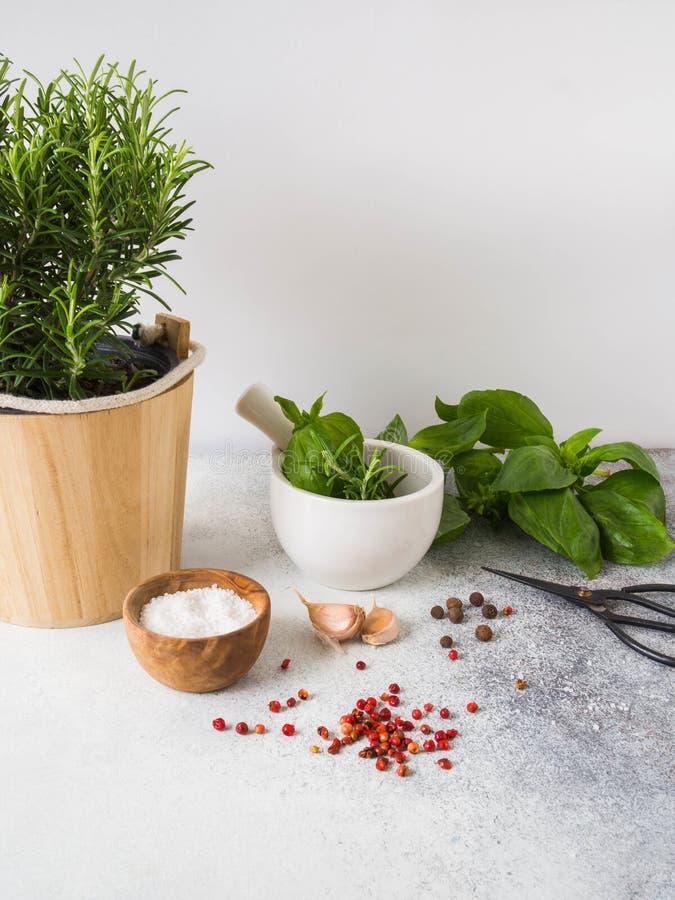 Verse rozemarijnstruik in houten potten, takjes van vers groen basilicum, wit mortier met stamper, kruiden en zout en knoflook op royalty-vrije stock foto