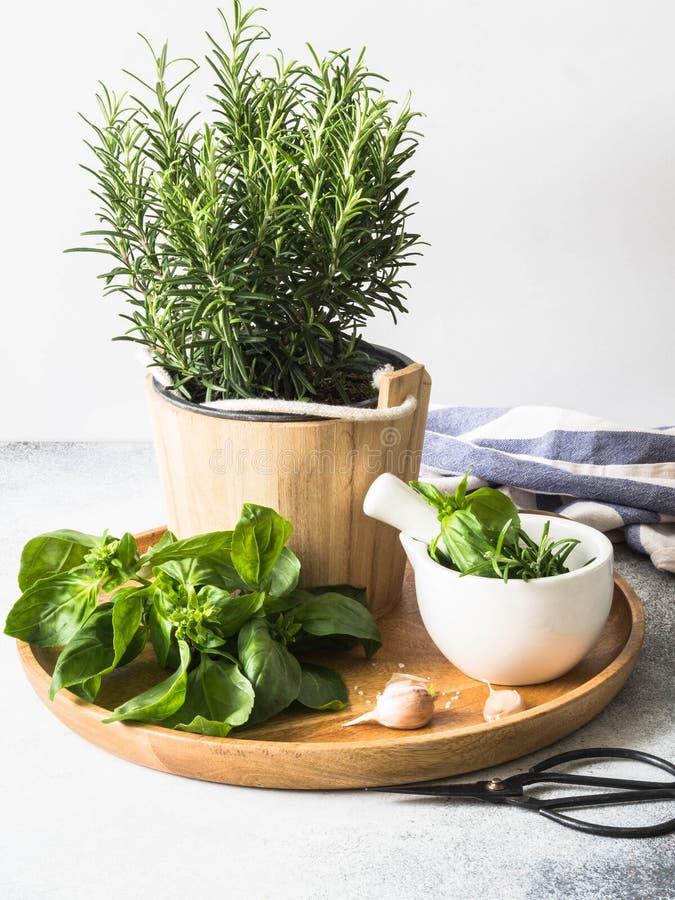 Verse rozemarijnstruik in houten potten, takjes van vers groen basilicum, wit mortier met stamper, zout en knoflook op een rond h stock afbeeldingen