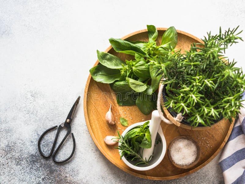 Verse rozemarijnstruik in houten potten, takjes van vers groen basilicum, wit mortier met stamper, zout en knoflook op een rond h royalty-vrije stock foto