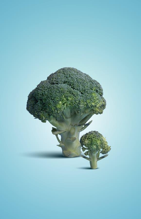 Verse Ruwe Broccoli op Blauwe Achtergrond royalty-vrije stock fotografie