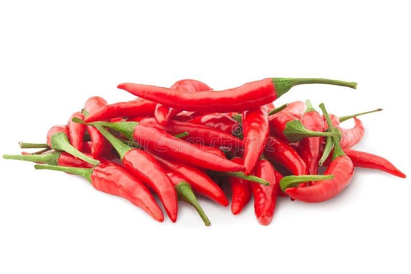 Verse ruwe roodgloeiende Spaanse peperspeper op witte geïsoleerde achtergrond, royalty-vrije stock foto