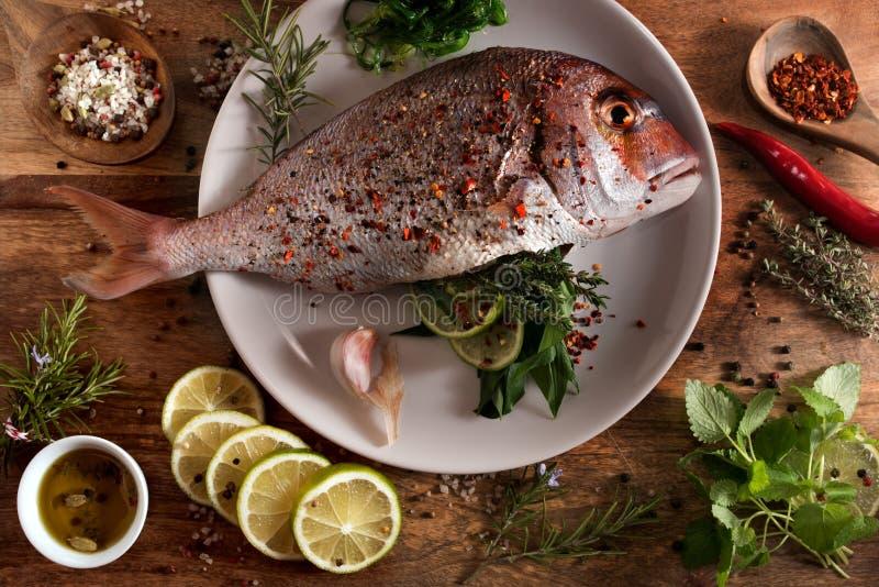 Verse ruwe vissen met kruiden en kruiden royalty-vrije stock fotografie