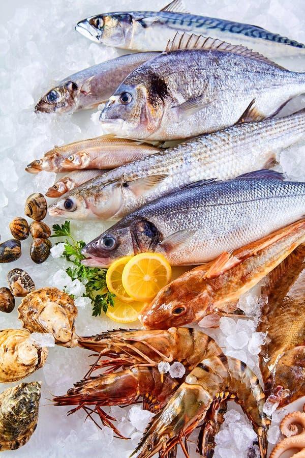 Verse Ruwe Vissen, Schaaldieren en Zeevruchten op Ijs royalty-vrije stock foto's