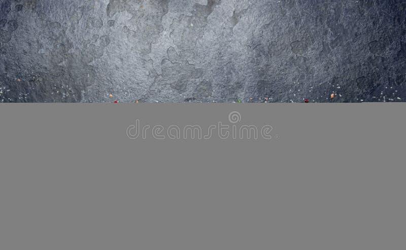 Verse ruwe zeevruchten - garnalen en krabben met kruiden en kruiden op donkergrijze achtergrond De ruimte van het exemplaar stock fotografie