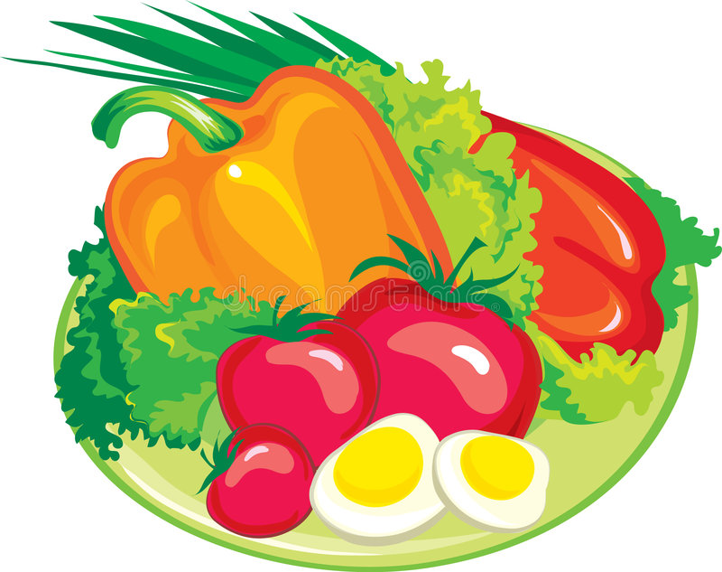 Verse salade vector illustratie