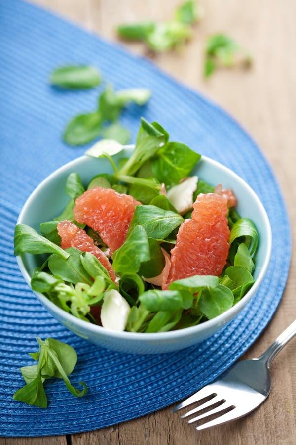 Verse salade met grapefruit royalty-vrije stock afbeelding