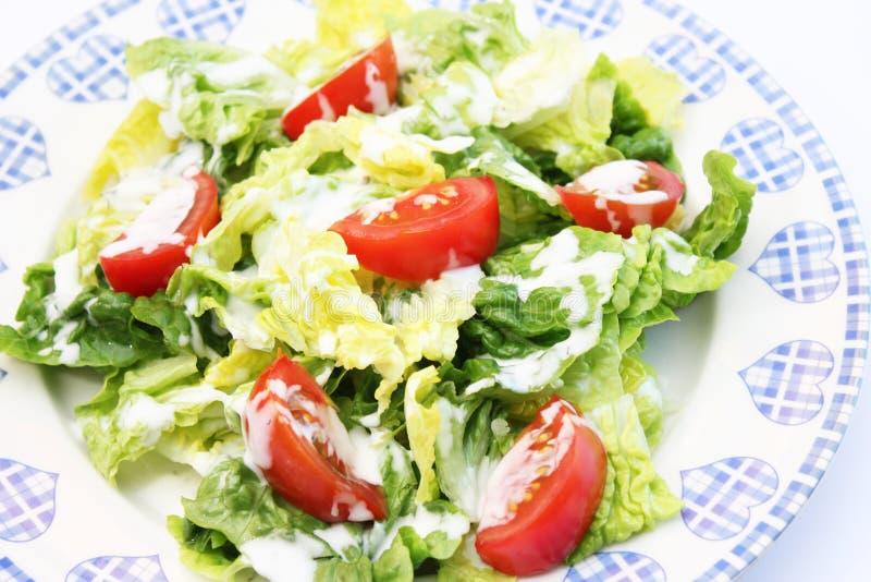 Verse salade met yoghurt stock foto
