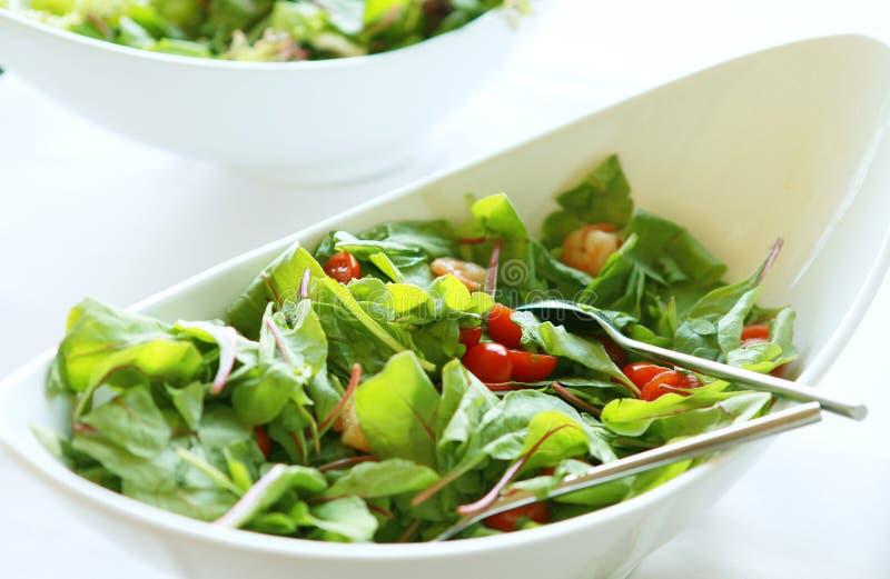Verse salat royalty-vrije stock afbeeldingen